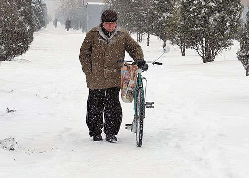 Snow in Dushanbe. Image by ASIA-Plus, February 3, 2014, used with permission,
