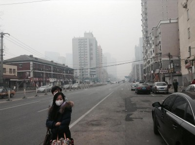 smog insurance