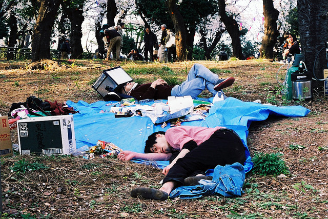 People sleep on a tarp. It's common to see people napping under the cherry blossoms after so much drinking. Photo taken April 3, 2014 by Flickr user James Hadfield. CC BY-NC-SA 2.0