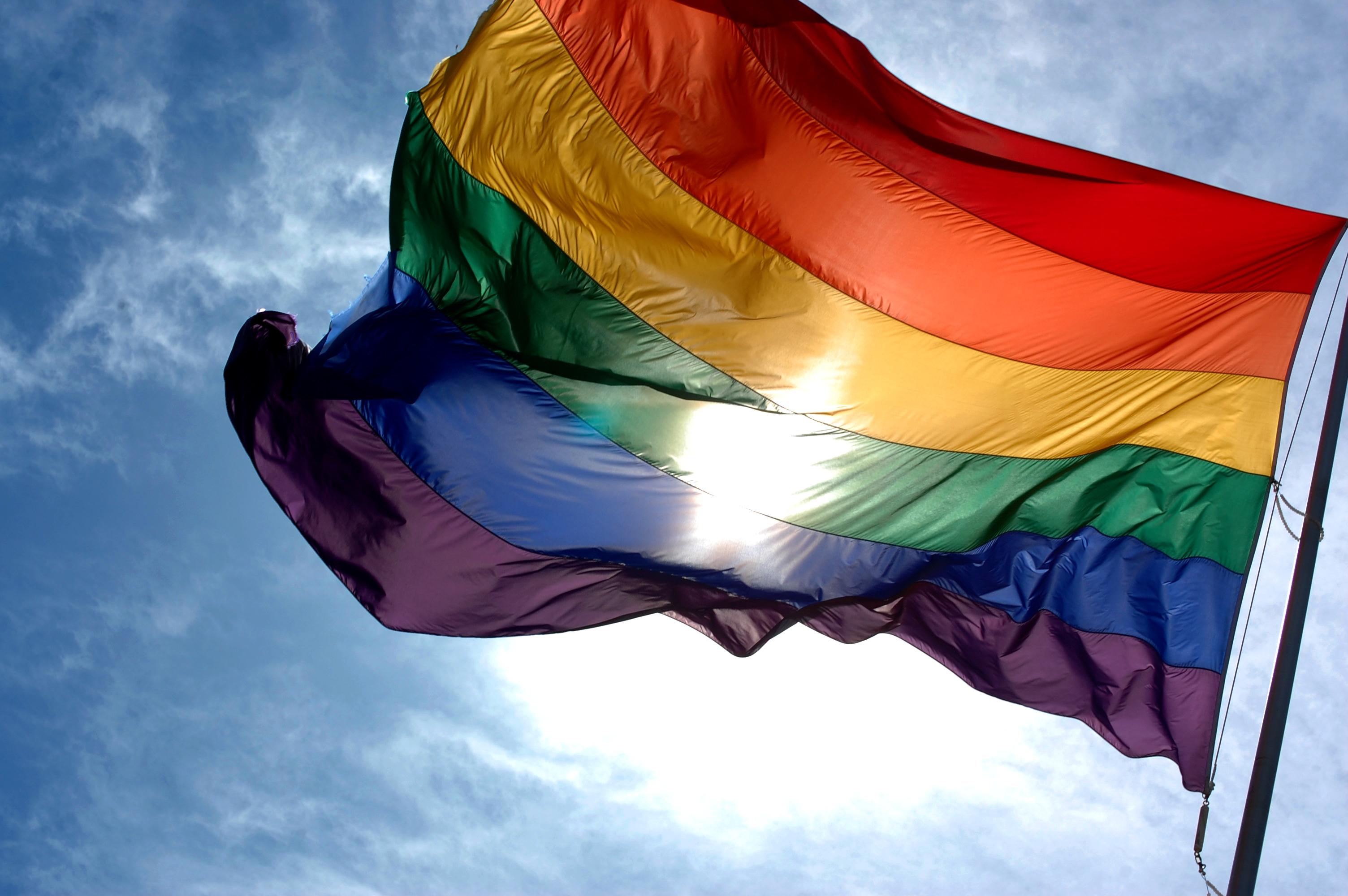 LGBT flag (Wiki image)