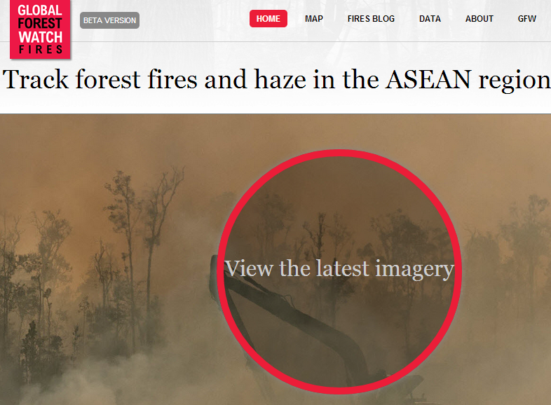 Main page of the Global Forest Watch-Fires online tool