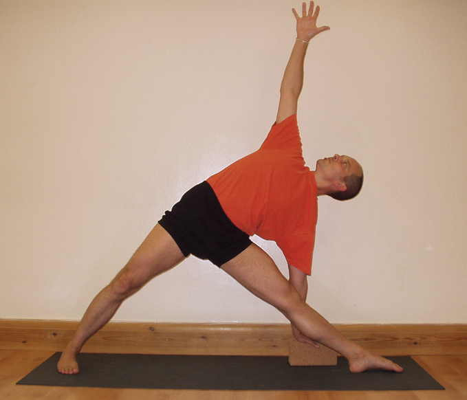 A student performing Uttitha Trikonasana, triangle pose, one of the basic standing poses in Iyengar Yoga. Image by Matthew Greenfield via Wikipedia. CC BY-SA 3.0