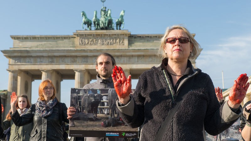 Animal rights activists of Animal Equality protested at Brandenburg Gate against the world's biggest animal sacrifice in Gadhimai in Nepal, with blood on the hands and signs with sacrificed animals. Image by Florian Boillot . Copyright Demotix (28/10/2014)
