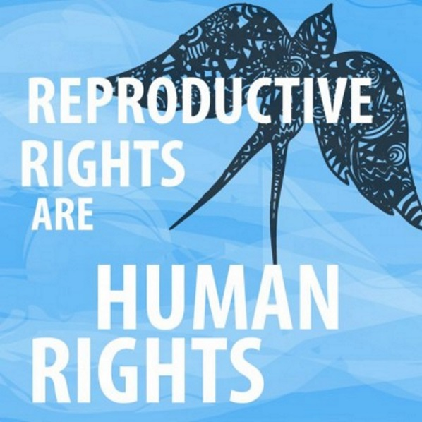 An image widely shared on the web, promoting reproductive rights as human rights.