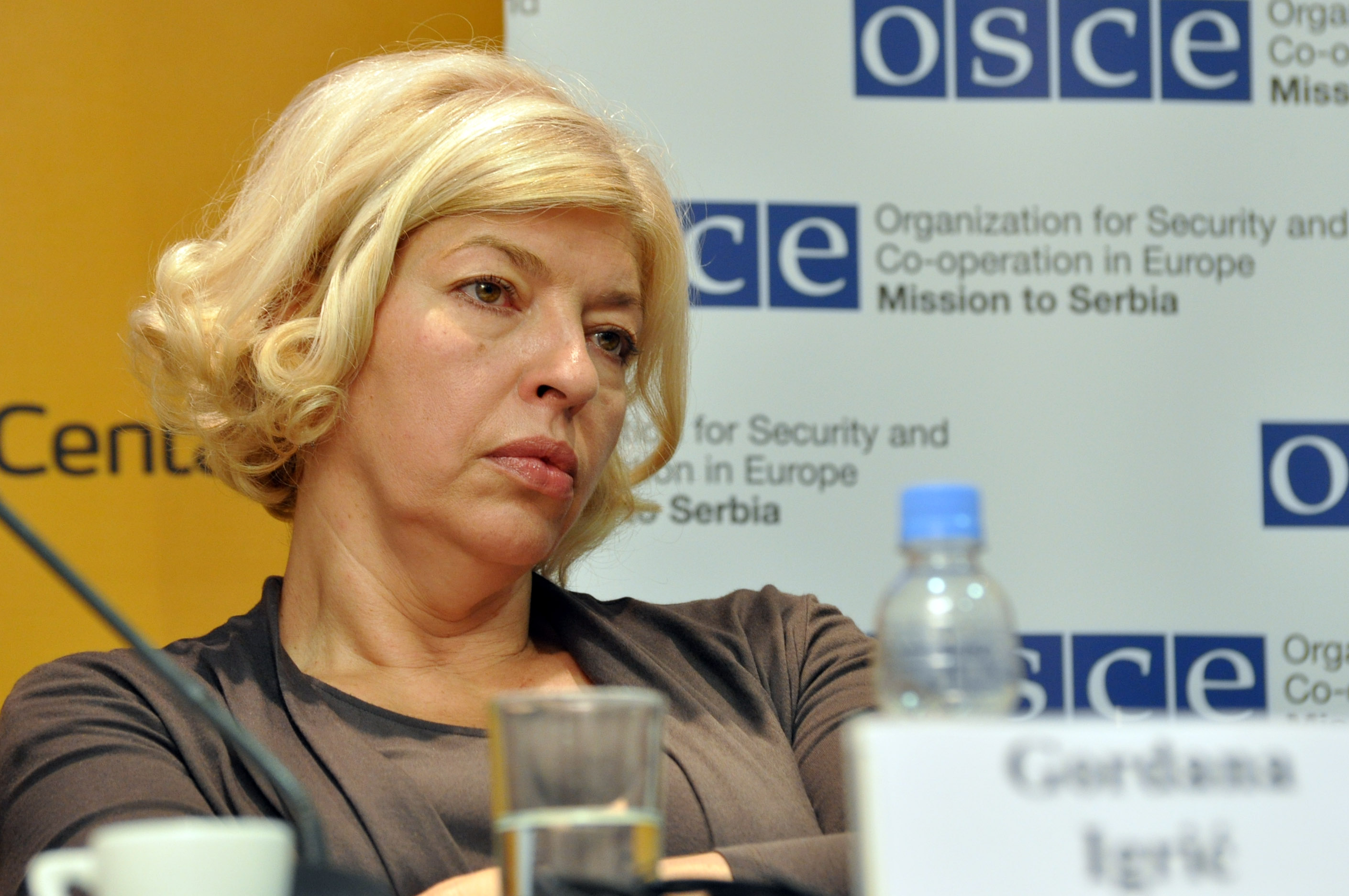 """BIRN Regional Network Director Gordana Igrić at a panel titled """"Media in Serbia at a Crossroads"""", July 2011. Photo courtesy of Media Center Belgrade, used with permission."""