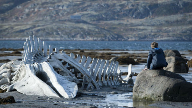 "A scene from ""Leviathan."" Image from Indiewire."