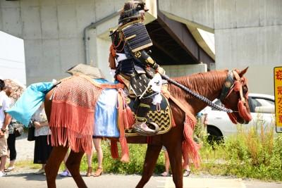 soma horses