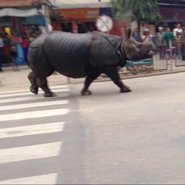 Image tweeted by Nepali blogger @janakdangol