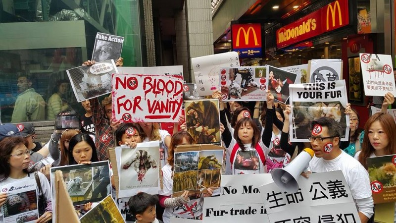 More than 100 animal rights activists protested against fur fair on February 25, 2015. Photo from Che Siaoyang Facebook.