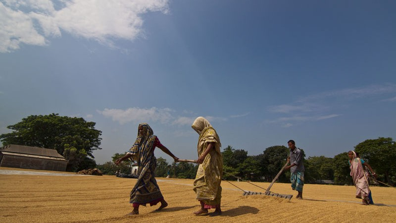 Women's participation in economic activities is increased but their health issues are neglected. Image by Zakir Hossain Chowdhury. Copyright: Demotix (03/10/2011)