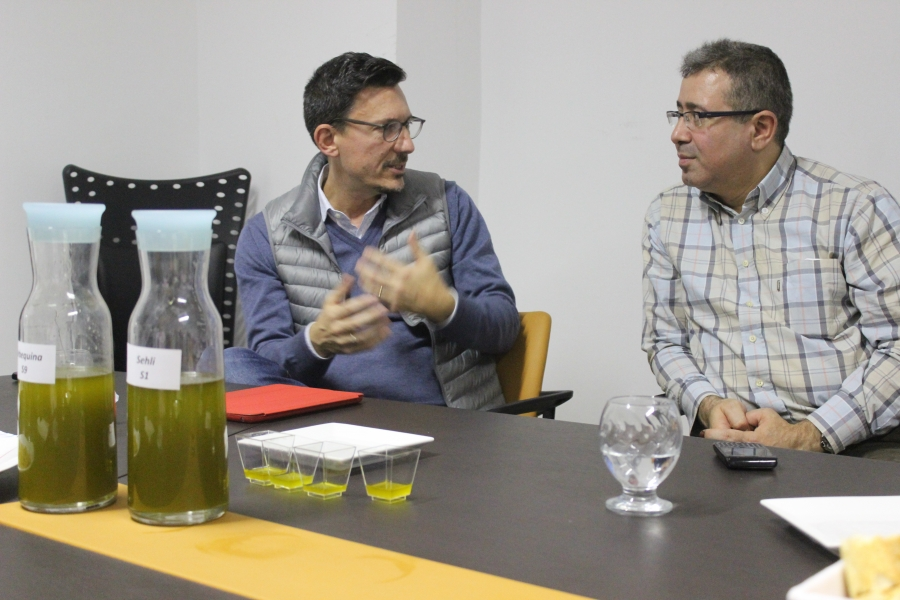 Chiheb Slama, right, presents the company's latest olive oil production to Italian clients, who compare varieties before confirming their order. Credit: Marine Olivesi. Published with PRI's permission
