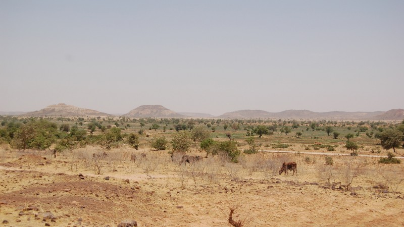 """Landscape Diffa region Niger"" by Roland Hunziker - http://www.flickr.com/photos/rolandh/151126866/. Licensed under CC BY-SA 2.0 via Wikimedia Commons -"