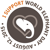 support elephant day