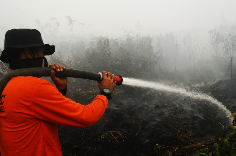 A volunteer try to extinguish a fire in a peatland in Rimbo Long, Kampar, Riau province, Indonesia. Photo by Fachrozi Amri, Copyright @Demotix (9/14/2015)