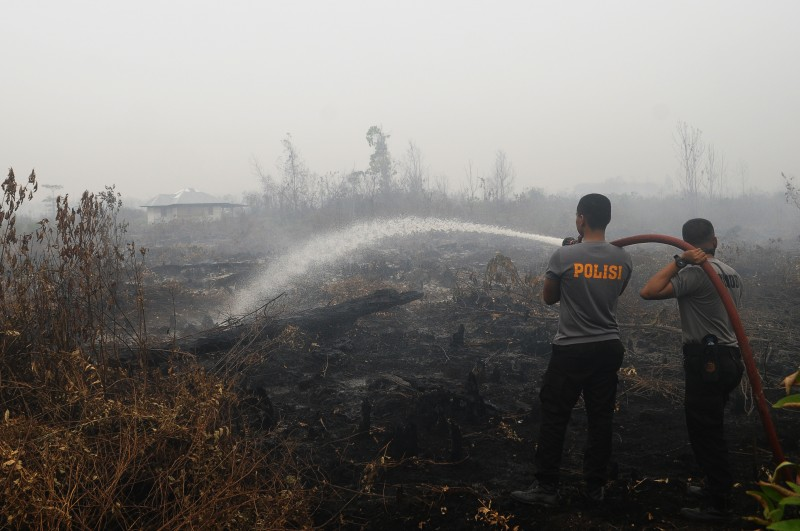 Soldiers extinguish the fire that burned peatlands in Rimbo Long, Kampar, Riau Province, Indonesia's Sumatra. Photo by Fachrozi Amri, Copyright @Demotix (9/16/2015)