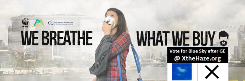 Фотография со страницы Facebook движения «Остановите смог».