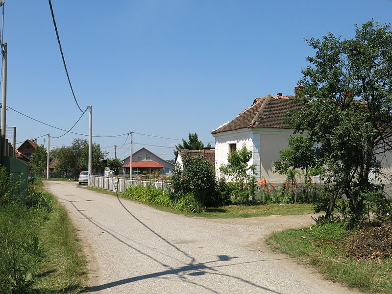 A street in the village of Šopić. Photo by Dungodung, used under CC BY-SA 3.0 license.