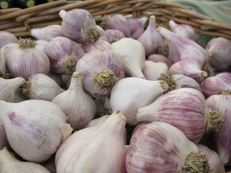 Garlic. Photo by Flickr user rfduck. CC BY-ND 2.0
