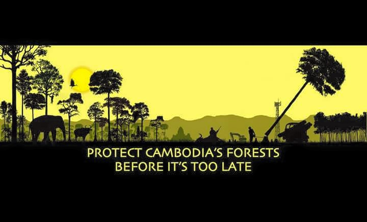 Image from the Facebook page of 'Prey Lang - It's Our Forest Too'