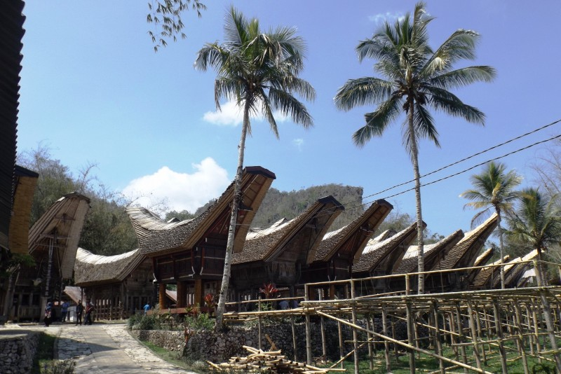 Tongkonan: traditional houses of Toraja tribe from Indonesia.