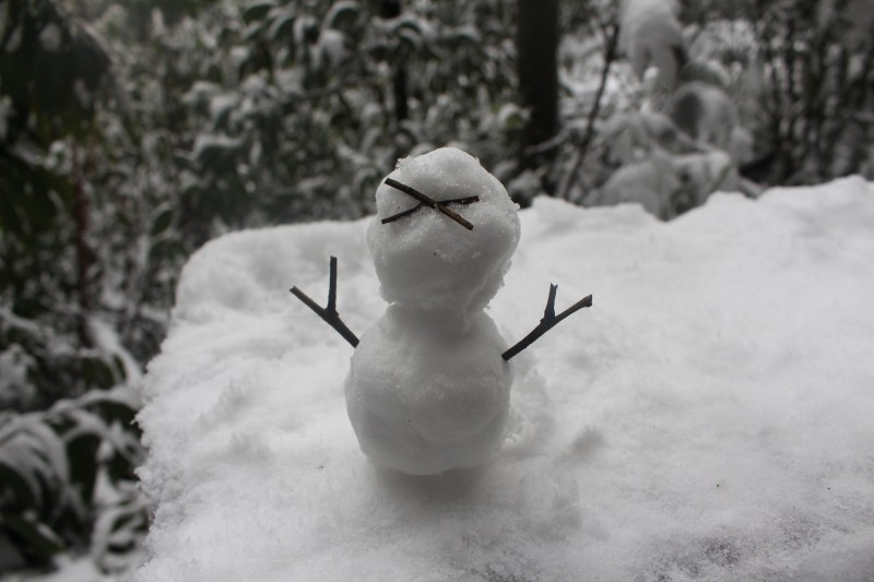 A snowman at Yangmingshan National Park. Photo by Chi-Hung Lin. CC BY-SA 2.0