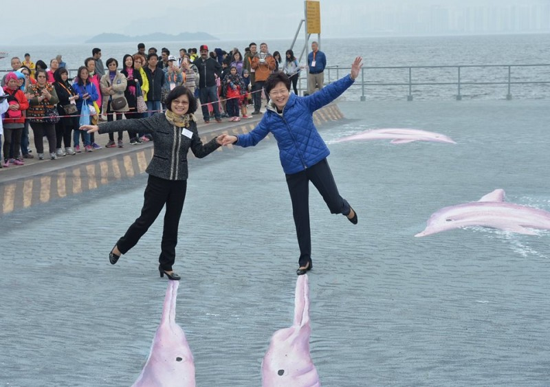 "The photo showing Hong Kong government chief secretary standing on the dolphin's nose is interpreted as a ""step"" to ""kill"" the Chinese dolphins."