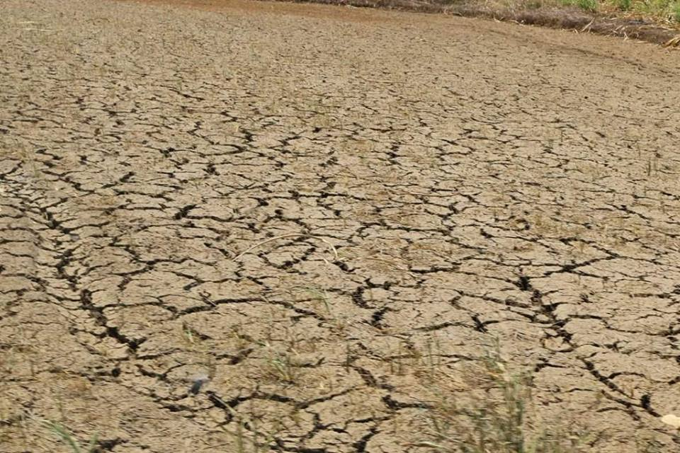 Drought has spread in several provinces of Mindanao Island in the Philippines. Photo from the Facebook page of RMP-NMR