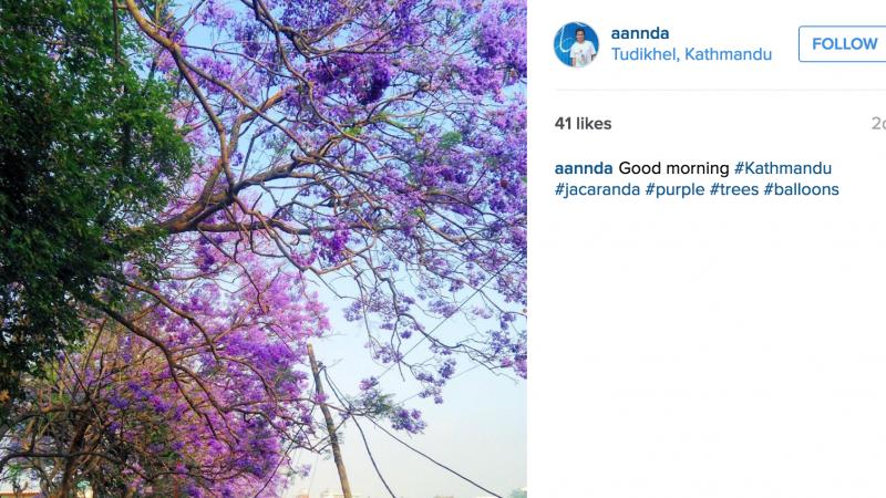 Ekrankopio el la Instagramo de Ananda Maharjan.