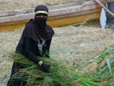 Iraq's Marshlands, Nearly Destroyed Under Saddam, Are Coming Back