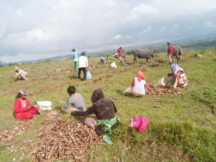 A farming village in Negros during Tiempo Muerto. Photo courtesy of UMA Pilipinas