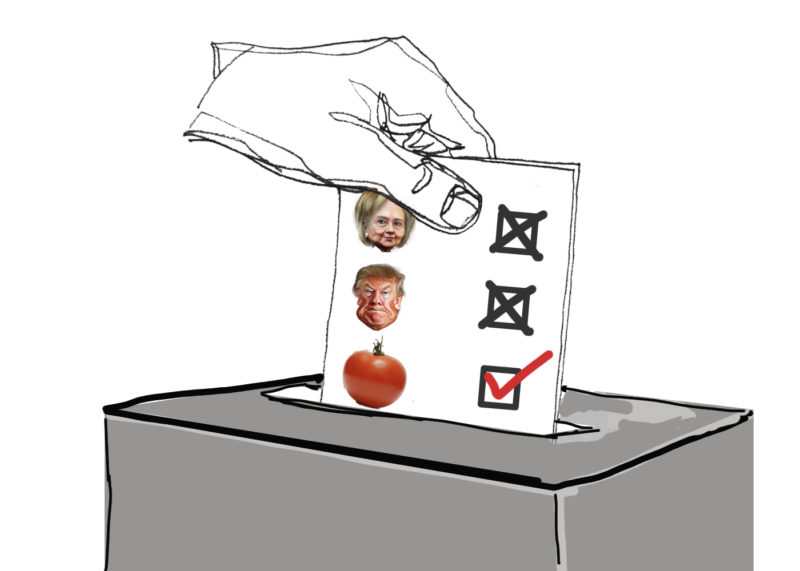 Hand and ballot illustration public domain from Pixabay. Clinton and Trump caricatures by DonkeyHotey (CC BY-SA 2.0)