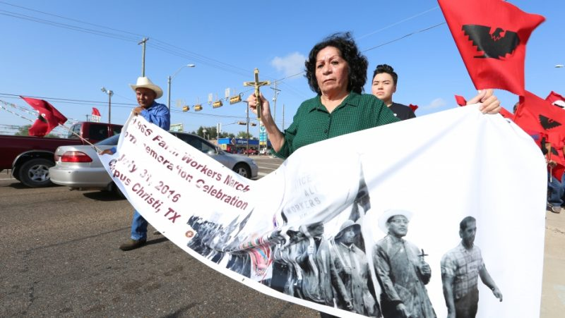 On September 9, 2016, Graciela Trevino marched in Edinburg, Texas to celebrate a 1966 farm worker strike. She also participated 50 years ago, when she walked from Rio Grande City to Austin, Texas to demand fair wages. Credit: Courtesy of the City of Edinburg