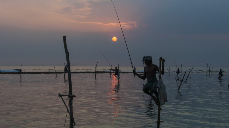 Stilt fishing in the evening light - an unique tourist attraction in Sri Lanka. Image via Flickr by Thomas Keller. BY-NC-ND 2.0