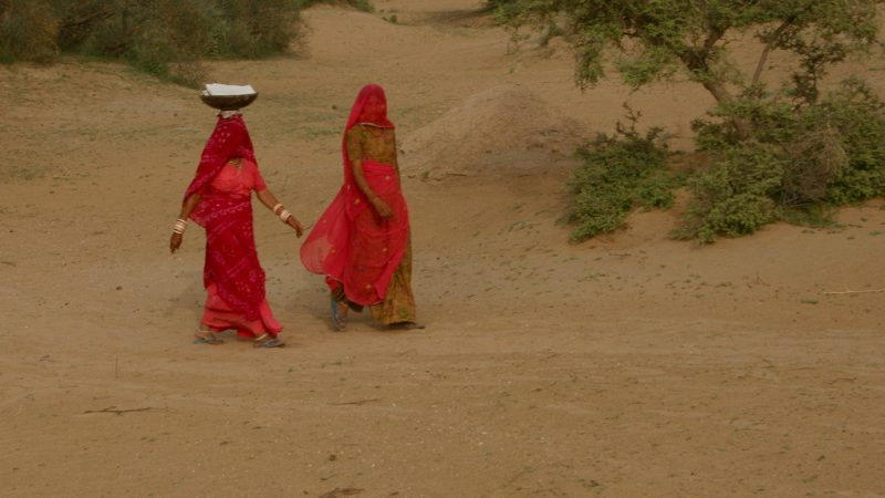 Veiled women going to work in the Thar desert. Image from Flickr by Nagarjun Kandukuru. CC BY 2.0