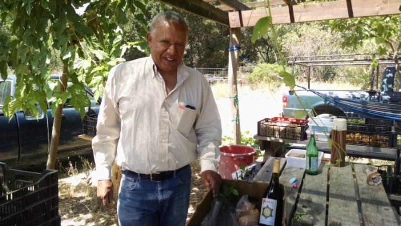 Menkir Tamrat cosecha pimientos etíopes a gran escala después de que su empresa de tecnología despidiera personal. Crédito: Meradith Hoddinott