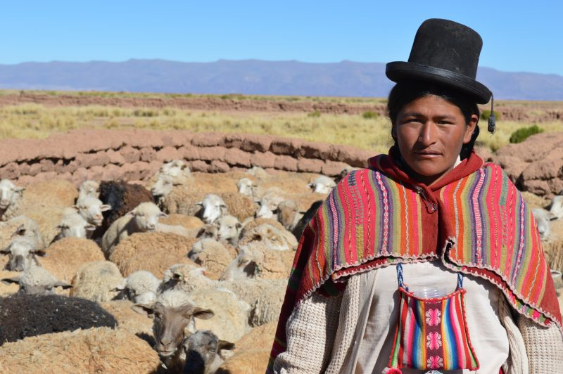 A Bolivian woman in the higlands of the country. Shared on Flickr by the European Commission DG ECHO Flickr account.