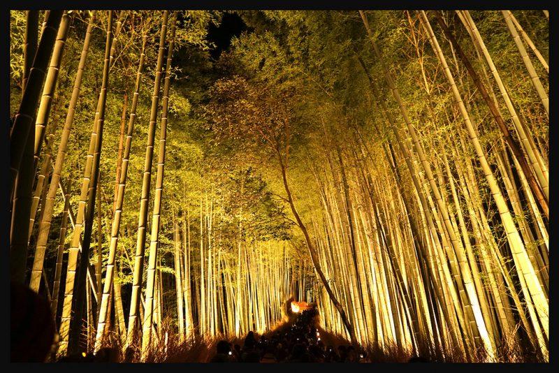 日本京都-嵐山夜燈