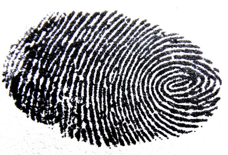 Thumbprint image via Pixabay. CC0 public domain.