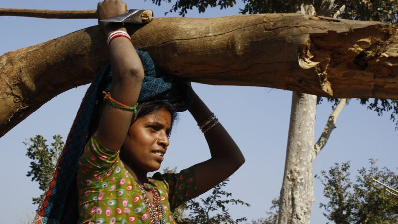 The women of the mountain villages in Rajasthan, India, carry 70 albs of wood on their heads every day for their cook fires. Image from Flickr by Engineering For Change. CC BY-SA 2.0