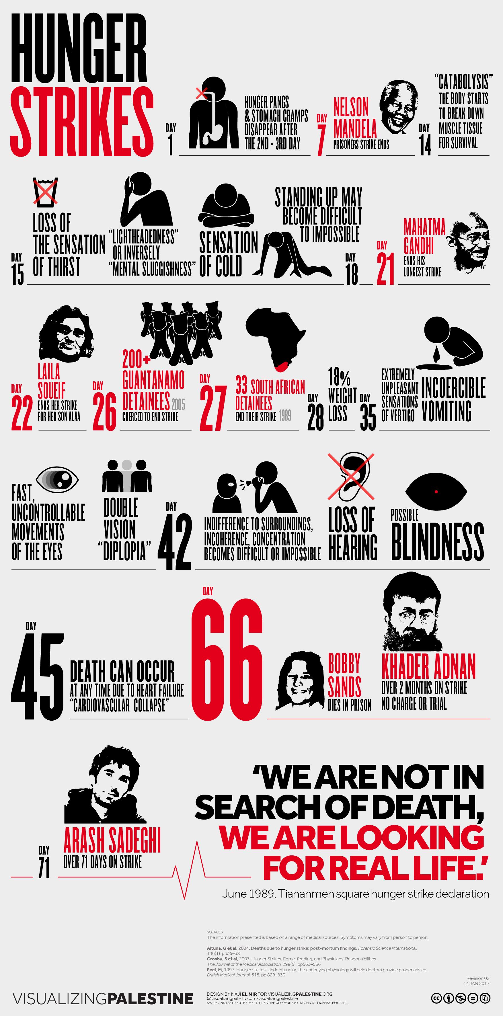 Infographie de Visualizing Palestine sur les effets d'une grève de la faim du 1er au 71e jour.