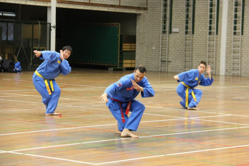Practitioners and instructors practicing Vovinam. Photo from Loa