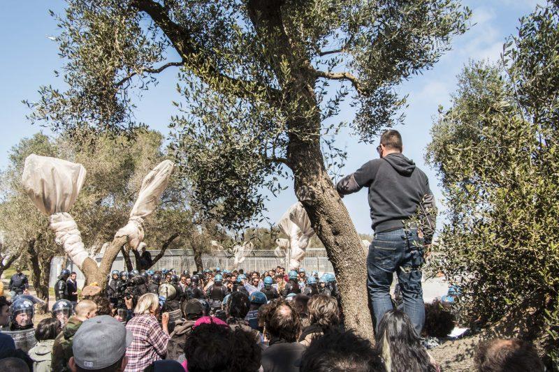 Les gens de Melendugno protègent les oliviers contre le gazoduc Trans Adriatique. Photo: Alessandra Tommasi