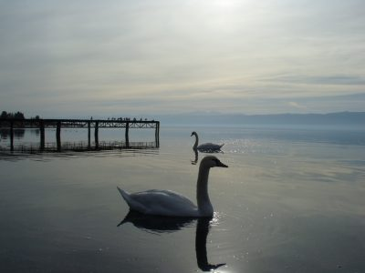 A Win for Citizen Activism After UNESCO Asks Macedonia to Stop All Construction Projects on Lake Ohrid
