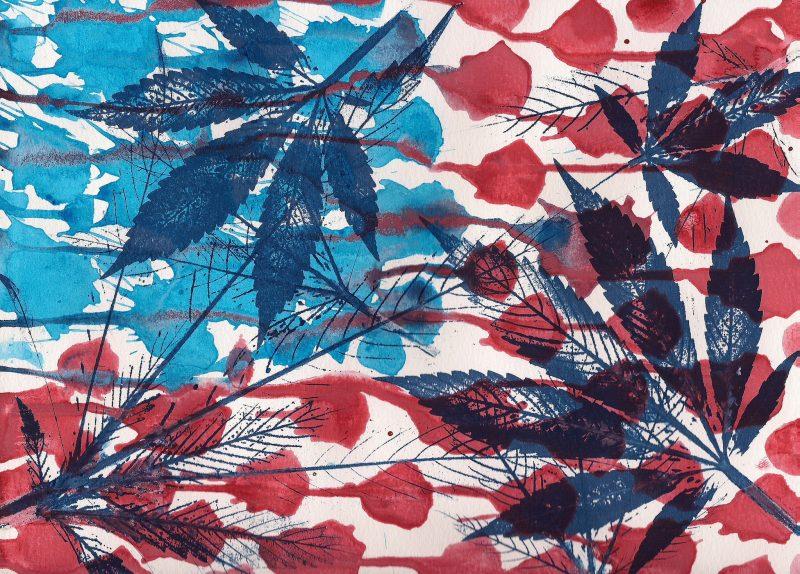 es-la-legalización-de-la-marihuana-en-trinidad-y-tobago-una-idea-cuyo-tiempo-ha-llegado