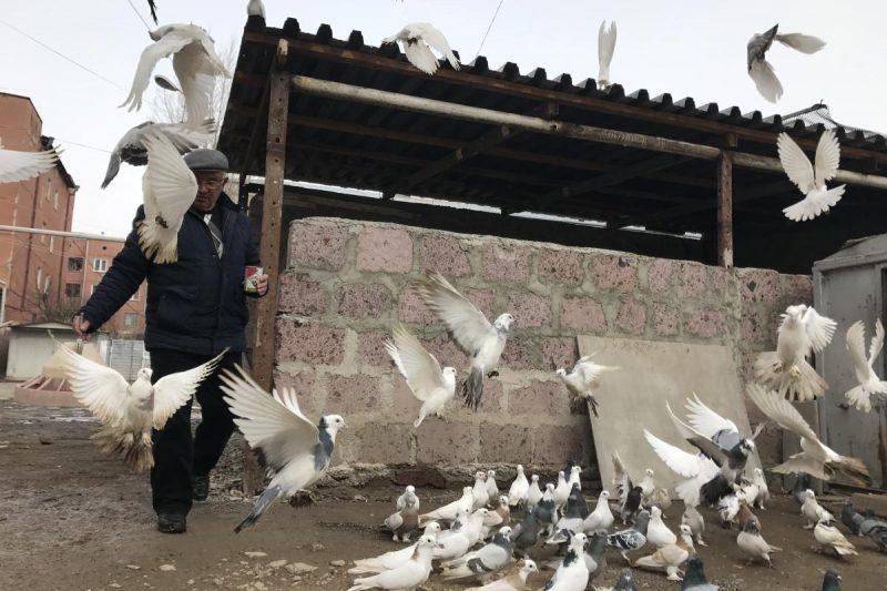 Το μερακλίδικο πουλί ποτέ φωλιά δεν κάνει μον έτσι βασανίζεται ωσότου ν αποθάνει.
