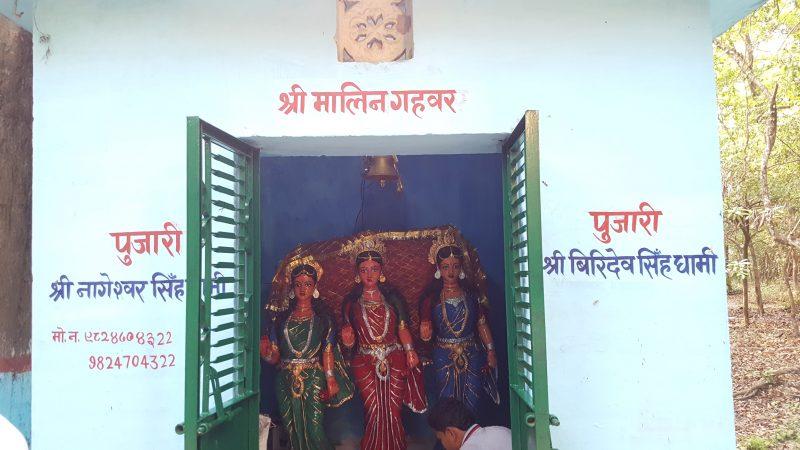 Pourquoi les pèlerins affluent du Népal et d\'Inde pour voir fleurir ...