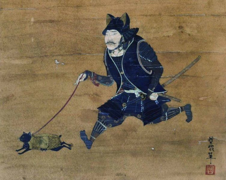 'Warrior takes armoured cat for a walk'
