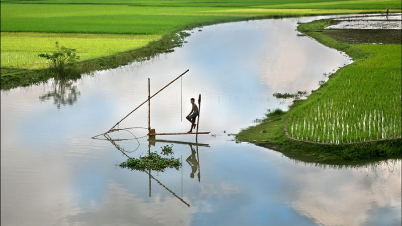 'Conservation or community rights'? Bangladesh bans fishing for 65 days