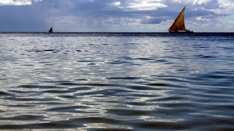 Datation au temps de Noël