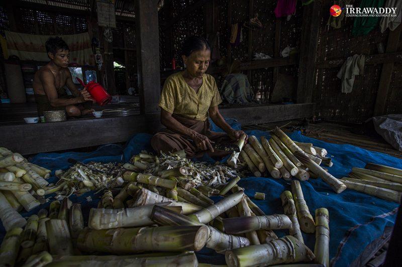 Une femme âgée est assise sur un filet, devant un amoncellement de pousses de bambou dont elle retire l'écorce.